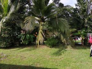 Casa En Ventaen Panama Oeste, Arraijan, Panama, PA RAH: 21-5783