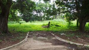 Terreno En Ventaen Panama, Amador, Panama, PA RAH: 21-5923