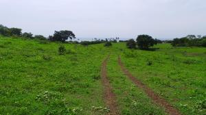Terreno En Ventaen Las Tablas, Las Tablas, Panama, PA RAH: 21-5924