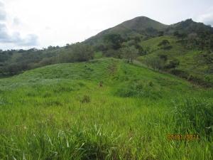 Terreno En Ventaen Capira, Cermeno, Panama, PA RAH: 21-5926