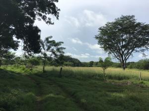 Terreno En Ventaen David, Porton, Panama, PA RAH: 21-5929