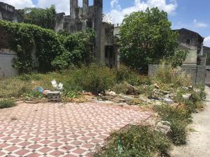 Terreno En Alquileren Panama, Calidonia, Panama, PA RAH: 21-5932