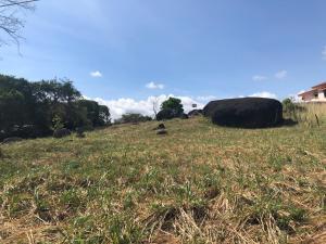 Terreno En Ventaen Chitré, Chitré, Panama, PA RAH: 21-5946