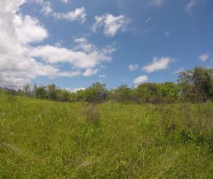 Terreno En Ventaen San Carlos, San Carlos, Panama, PA RAH: 21-6018