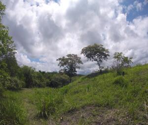 Terreno En Ventaen San Carlos, San Carlos, Panama, PA RAH: 21-6019