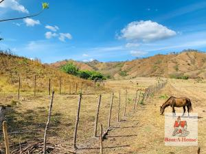 Terreno En Ventaen Tonosi, Canas, Panama, PA RAH: 21-6054
