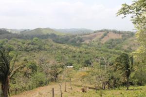 Terreno En Ventaen Chilibre, San Vicente, Panama, PA RAH: 21-6305