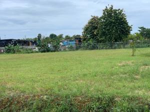 Terreno En Alquileren Pacora, Cerro Azul, Panama, PA RAH: 21-6357