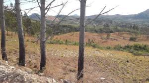Terreno En Ventaen Cocle, Cocle, Panama, PA RAH: 21-6431