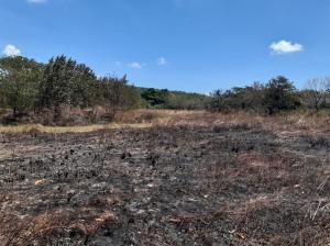 Terreno En Ventaen Cocle, Cocle, Panama, PA RAH: 21-6624