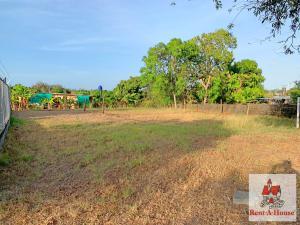 Terreno En Ventaen Las Tablas, Las Tablas, Panama, PA RAH: 21-6636