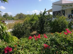 Casa En Ventaen Chame, Las Lajas, Panama, PA RAH: 21-6789