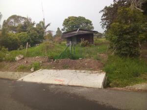 Terreno En Ventaen Tierras Altas, Volcan, Panama, PA RAH: 21-6991