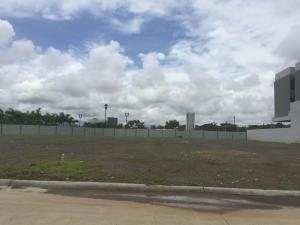 Terreno En Ventaen Panama, Santa Maria, Panama, PA RAH: 21-7002