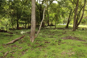 Terreno En Ventaen Chame, Sora, Panama, PA RAH: 21-7042
