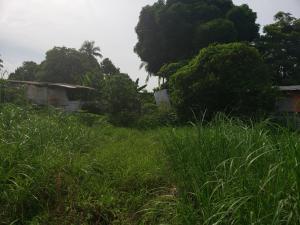 Terreno En Ventaen Panama, Juan Diaz, Panama, PA RAH: 21-7178