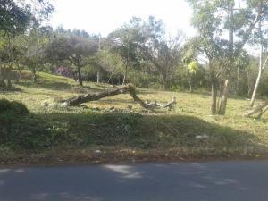Terreno En Ventaen San Carlos, San Carlos, Panama, PA RAH: 21-7217