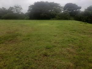 Terreno En Ventaen Chame, Coronado, Panama, PA RAH: 21-7227
