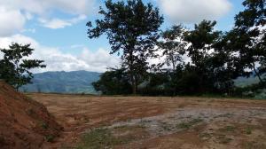 Terreno En Ventaen Chame, Sora, Panama, PA RAH: 21-7408
