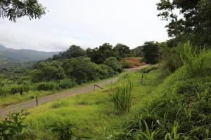 Terreno En Ventaen Chame, Sora, Panama, PA RAH: 21-7423