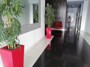 Apartamento En Alquileren Panama, San Francisco, Panama, PA RAH: 21-7455