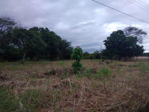 Terreno En Ventaen Penonome, El Coco, Panama, PA RAH: 21-7531