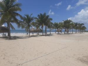 Apartamento En Ventaen Chame, Punta Chame, Panama, PA RAH: 21-7674