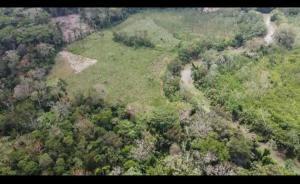 Terreno En Ventaen Pinogana, Yaviza, Panama, PA RAH: 21-7858