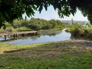 Terreno En Ventaen La Chorrera, Chorrera, Panama, PA RAH: 21-2634