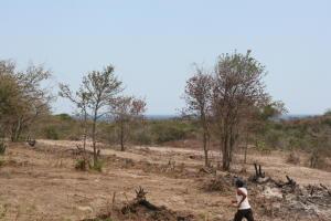 Terreno En Ventaen San Carlos, San Carlos, Panama, PA RAH: 21-7885