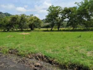 Terreno En Ventaen Capira, Cermeno, Panama, PA RAH: 21-7888