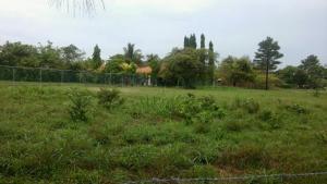Terreno En Ventaen Chame, Coronado, Panama, PA RAH: 21-8105