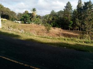 Terreno En Ventaen Pacora, Cerro Azul, Panama, PA RAH: 21-8109