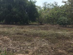 Terreno En Ventaen Cocle, Cocle, Panama, PA RAH: 21-8150