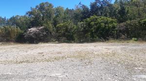 Terreno En Ventaen Boquete, Bajo Boquete, Panama, PA RAH: 21-8202
