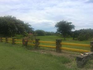 Terreno En Ventaen San Carlos, San Carlos, Panama, PA RAH: 21-8209