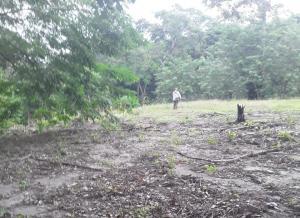 Terreno En Ventaen Rio Hato, Playa Blanca, Panama, PA RAH: 21-8219