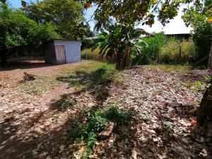 Terreno En Ventaen David, David, Panama, PA RAH: 21-8277