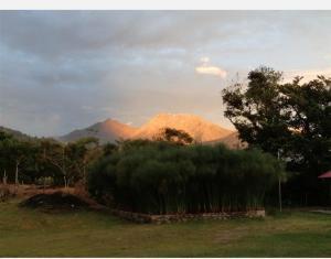 Negocio En Ventaen Tierras Altas, Volcan, Panama, PA RAH: 21-8897