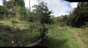 Terreno En Ventaen San Carlos, San Carlos, Panama, PA RAH: 21-8483