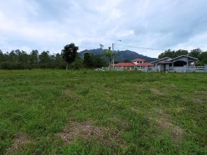Terreno En Ventaen Chame, Punta Chame, Panama, PA RAH: 21-8521