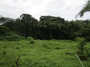 Terreno En Ventaen Colón, Colon, Panama, PA RAH: 21-8533