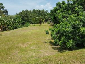 Terreno En Ventaen San Carlos, San Carlos, Panama, PA RAH: 21-8585