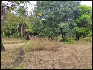 Terreno En Ventaen Chame, Punta Chame, Panama, PA RAH: 21-8617