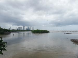 Apartamento En Ventaen Panama, Coco Del Mar, Panama, PA RAH: 21-8777