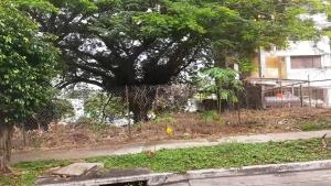 Terreno En Ventaen Panama, Hato Pintado, Panama, PA RAH: 21-8814