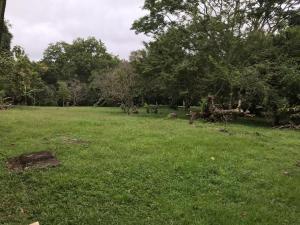 Terreno En Ventaen Panama Oeste, Arraijan, Panama, PA RAH: 21-9127