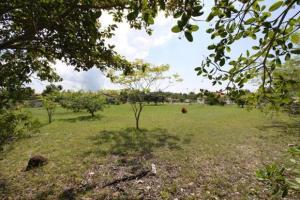 Terreno En Ventaen San Carlos, San Carlos, Panama, PA RAH: 21-9093