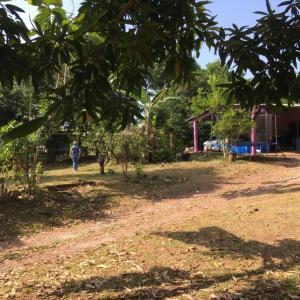Terreno En Ventaen Panama, Pedregal, Panama, PA RAH: 21-9204