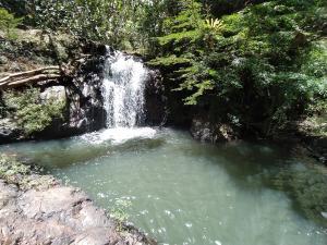 Terreno En Ventaen Capira, Villa Carmen, Panama, PA RAH: 21-9236